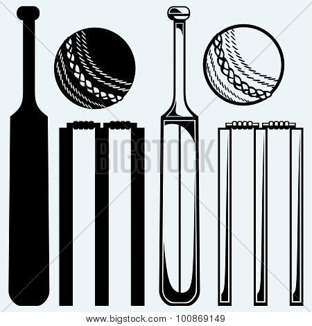 Set equipment for cricket. Cricket bat and ball