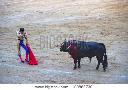 Bullfighting Show At The Arena Of The Plaza Monumental De Barcelona