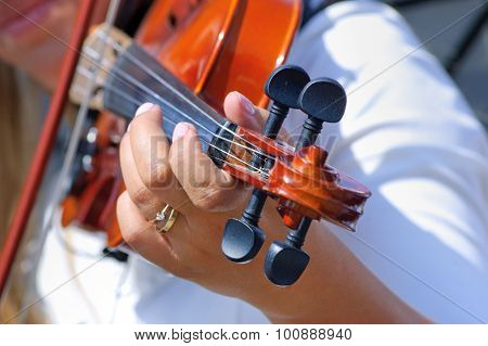 Hand on the fingerboard of violin
