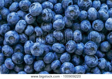 Blueberries Fruit Vitamin Fresh