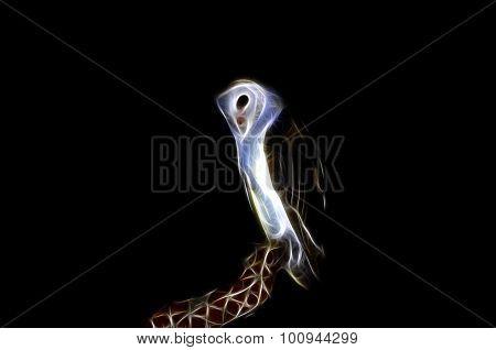 Barn Owl Tyto Alba Fractalius