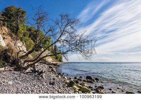 Baltic Sea coast on the island Ruegen in Germany. poster