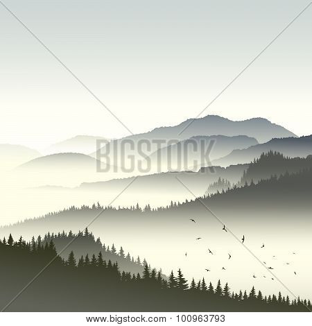 Illustration Of Coniferous Forest On Hills In Fog.