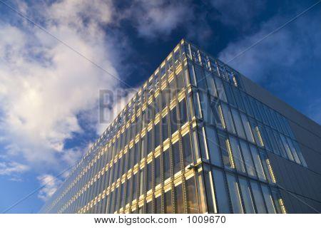Sunlit Offices