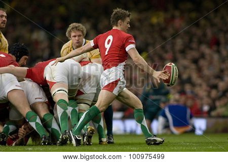 CARDIFF, WALES. 28 NOVEMBER 2009. Dwayne Peel of Wales  while playing in the Invesco Perpetual International Rugby Union match between Wales and Australia at the Millennium Stadium.