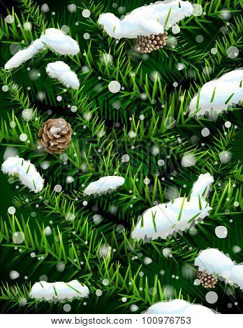 Christmas Tree Branches With Pinecones And Snow
