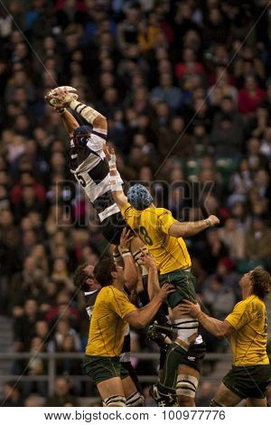 LONDON, ENGLAND. 26 NOVEMBER 2011. Barbarians Victor Matfield (c), catches the ball in a lineout during the Killik Cup, rugby union match between the Barbarians and Australia, played at Twickenham