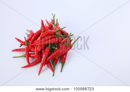 red chili or chili padi on the white background
