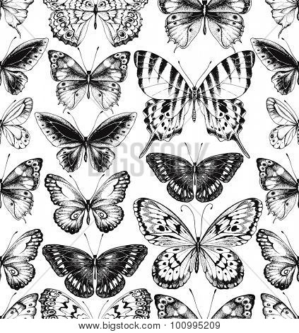Seamless pattern of black silhouettes of butterflies on white background, hand-drawn illustration.