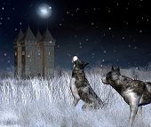 Digital render of a lonely castle in a moonlit winter mountain landscape with wolves in the foreground poster