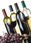 Several bottles of white and red wine two glasses and grapes isolated on white background poster