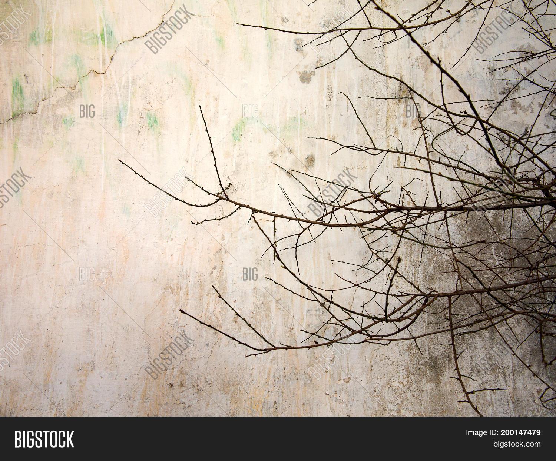 Creative Vintage Image & Photo (Free Trial) | Bigstock