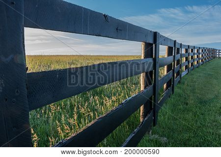 Angle View of Horse Farm Fence in Summer