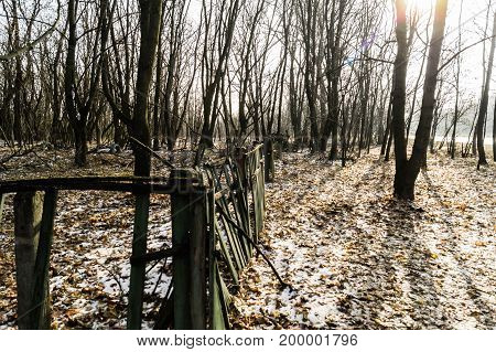 Old wooden decayed fence around a nursery in chernobyl