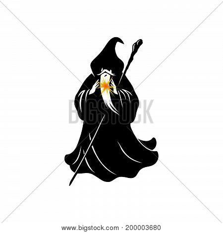 Wizard Cartoon Character Design Vector Illustration Design