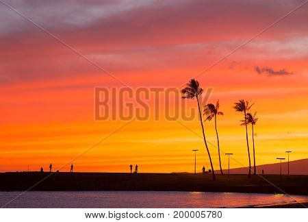 Spectacular sunset on the tropical Pacific Island Oahu Hawaii. Onlookers admire a colorful sunset on Waikiki beach.