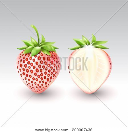 pineberry white strawberry and a half of white strawberry, fruit, Vector