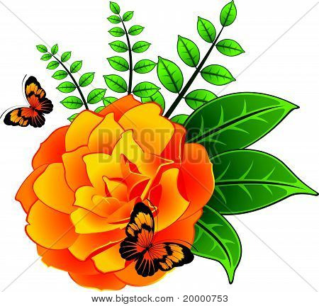Yellow roses on a white background and butterflies