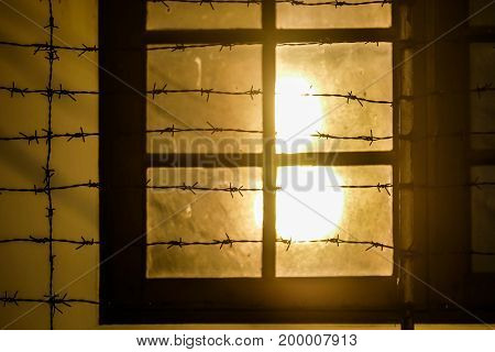 windows with Barbed sunrise time in edge of town