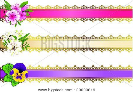 Narrow strips of color with flowers and a place for text