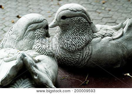 pigeon statue couple sweet love valentine concept