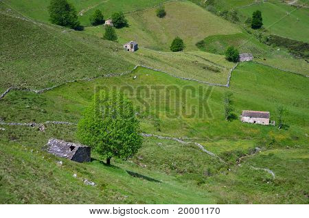 Scenic Landscape With Cabins And Plots