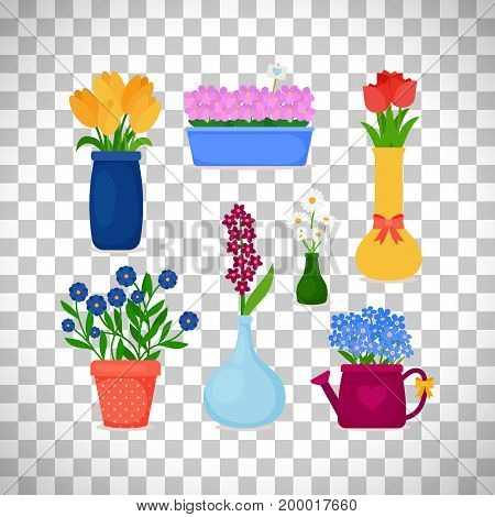 Spring flowers in pots and flower in vase set isolated on transparent background. Vector illustration