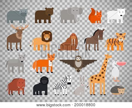 Zoo animals flat colorful icons isolated on transparent background. Vector illustration