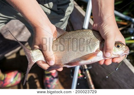 Young fisherman is holding a bream caught in a bait close-up