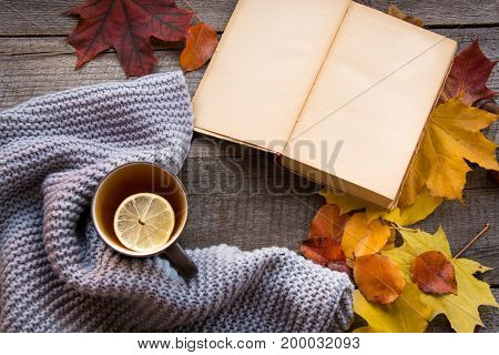 Mug of tea cozy knitted scarf autumn leaves open book and pumpkin on wooden board. Autumn still life vintage style. Flat lay.