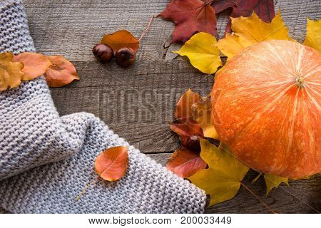 Fall still life. Autumn leaves warm scarf and pumpkin on wooden board. Top view, vintage style. Flat lay.