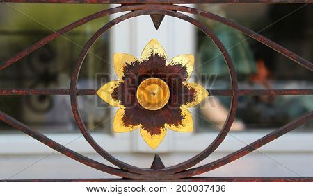 gold colored flower rusty ornamental ironwork in front of a window