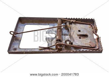 Old Rattrap isolated on white background. brown, catch, closeup,