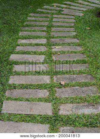 beautiful curve brick of walkway with some grass background.