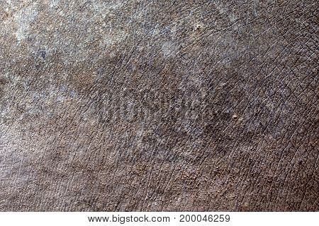 Close up seamless rhino skin surface texture background