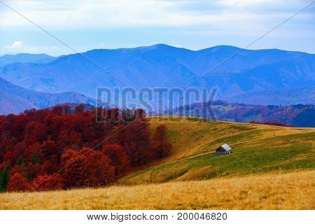 On the beautiful lawn near the forest of yellow - orange coloured trees there is an old hut at the high mountains in warm autumn day.