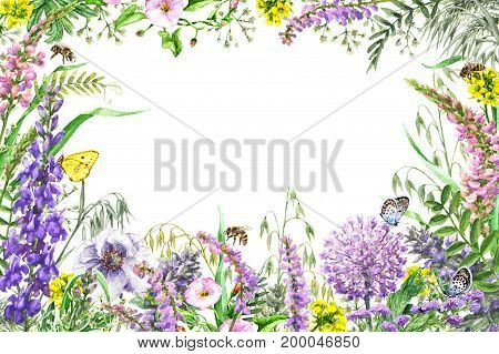 Hand drawn wild flowers and insects. Watercolor vivid rectangle horizontal frame with yellow pink lilac wildflowers flying butterflies and bees. Space for text.