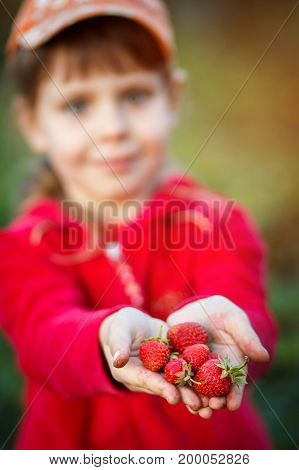 Strawberry, summer, vacation and recreation concept - young beautiful girl with strawberry. Girl holding strawberry in hands. Strawberry in focus. selective focus