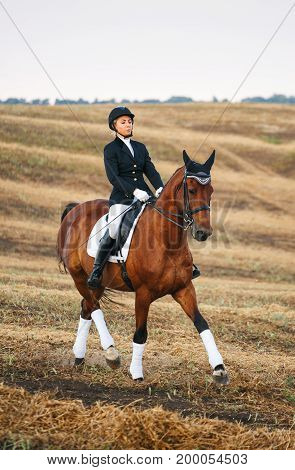 horse, active recreation, sport and equestrian concept - Portrait of equine sportswoman jumping on a horse