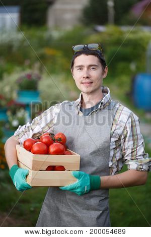 Young farmer guy with tomato