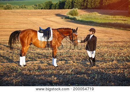 horse, animal, active recreation and lfestyle concept - Beautiful elegance woman with a horse. Has slim sport body. Portrait nature. People and animals. Equestrian. Close up.