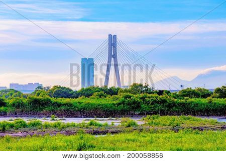 Bridge with river grassland area in Taipei