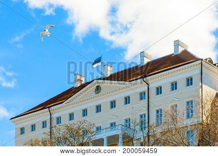 Estonian government building Stenbock House on Toompea hill in old Tallinn city, Estonia. Seagull in blue sky