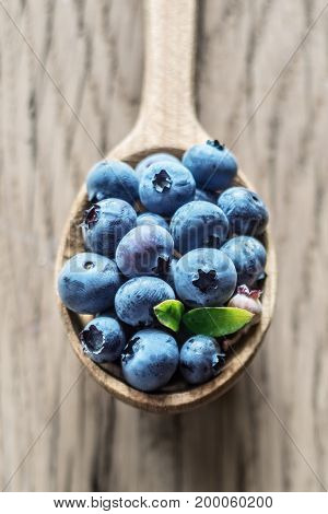 Blueberries in the wooden spoon on the table.