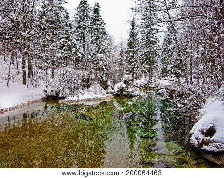 Winter reflections in a cold mountain stream, river Sava near lake Bohinj, Slovenian Alps, Slovenia