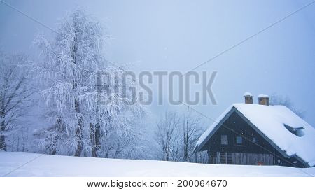 Trees and a mountain hut in a fog covered with snow at mountain Vogel in slovenian alps, Slovenia