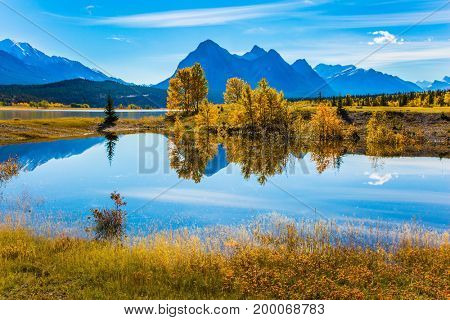 The mirror surface of the magnificent artificial lake Abraham reflects clouds and trees. A sunny autumn day in the Rocky Mountains of Canada. The concept of ecological and active tourism