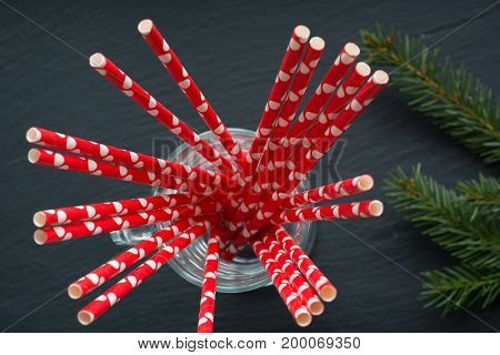 Red straws in mug on black background and spruce. Top view and close up. Shallow dof. Selective focus.