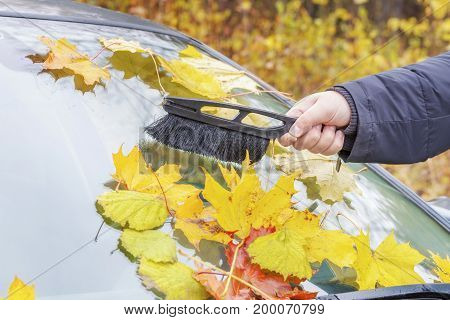 Man cleaning car window in autumn day