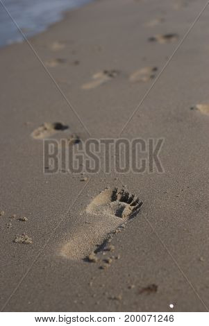 Footprint in damp sand on the beach
